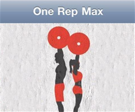 creatine 1 rep max tools sports science co