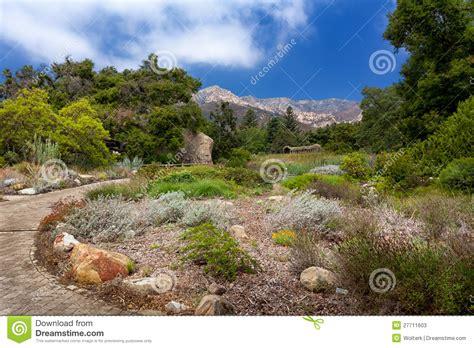 Z Garden Santa by Santa Barbara Botanic Garden Stock Photos Image 27711603
