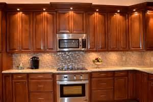Kitchen Cabinets In Miami Florida Kitchen Remodel Cooper City Fl Contemporary Kitchen Miami By Kabco Kitchens