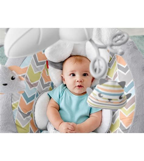 fisher price puppy bouncer fisher price sweet snugapuppy dreams deluxe bouncer