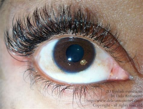 Silk Eyelash Extension 2d eyelash extensions using 07 silk lashes eyelash extensions eyelash