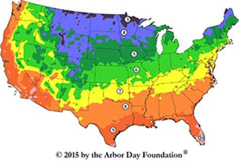 zone 10 gardening tree hardiness zones american heritage trees