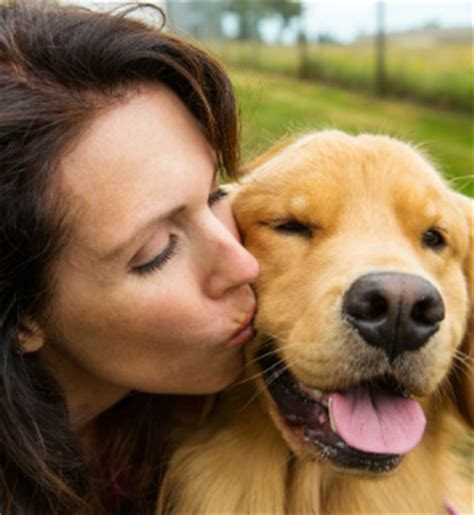 how to tell if a puppy is sick puppy dogs can tell and help when owners are sick
