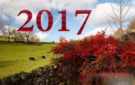 wallpaper hd new 2017 happy new year 2017 hd wallpapers weneedfun