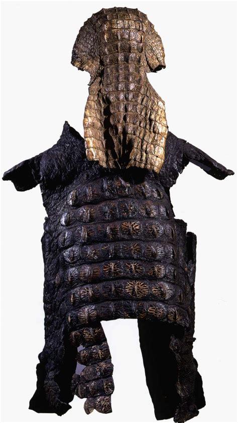 Crocodile Armour crocodile skin suit of armour 187