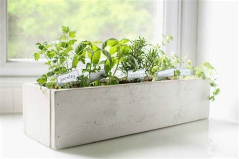 make a colorful indoor herb garden a beautiful mess how to create a beautiful kitchen herb garden lovely etc