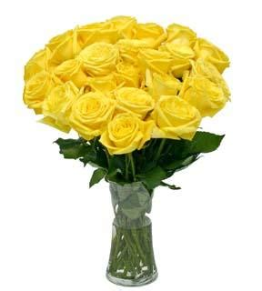 Yellow Roses In Vase by 3 Dozen Yellow Roses In Vase Us 70 50 Roses To