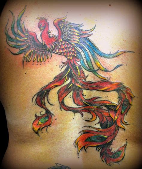 phoenix tattoo nelson 17 best images about dragons on pinterest coloring