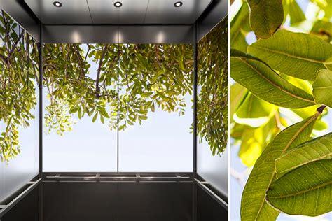 bringing  beauty  nature  interior spaces