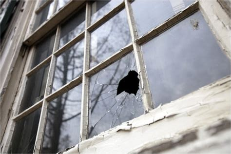 home window repair vs replacement what is best for you