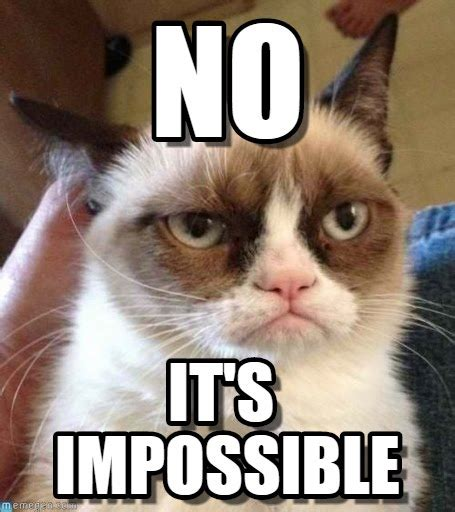 Grumpy Cat Meme No - no grumpy cat reverse meme on memegen