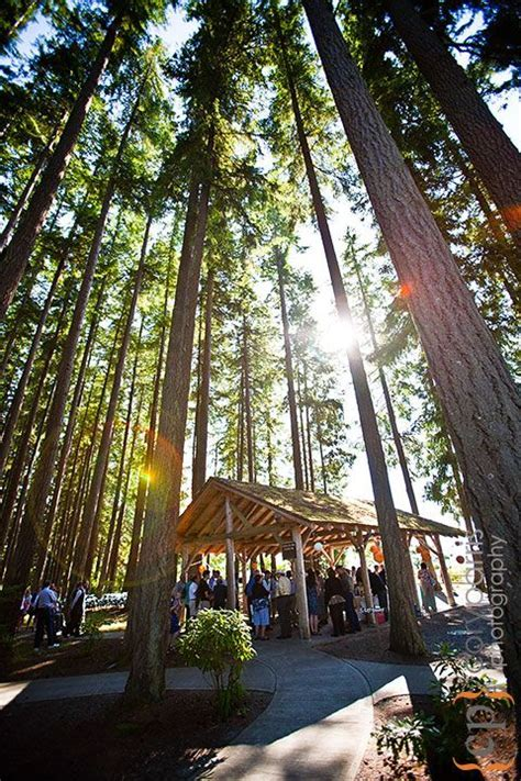 Kitsap Memorial State Park Wedding   Seattle Wedding