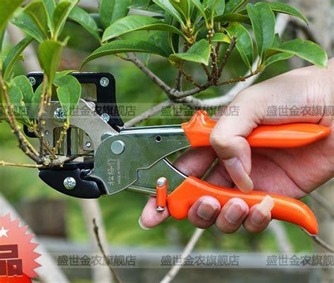 grafting and budding fruit trees budding knife reviews shopping reviews on budding