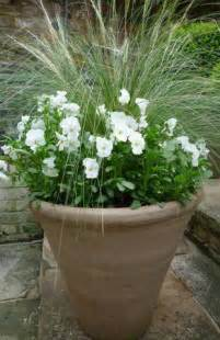 Plant Combination Ideas For Container Gardens Container Planting Combinations Shoot