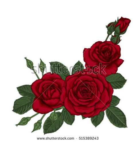 rose tattoo stock images royalty free images amp vectors