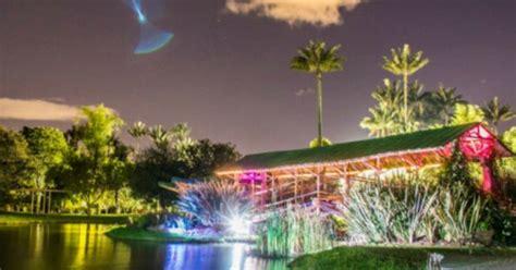 imagenes de jardines nocturnos jard 237 n bot 225 nico nocturno el plan para el 250 ltimo viernes