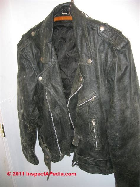 Mildew On Leather by Salvage Building Contents How To Sort Clean Moldy Or