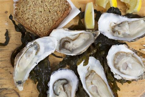 Oyster Health oyster nutrition facts calories and health benefits