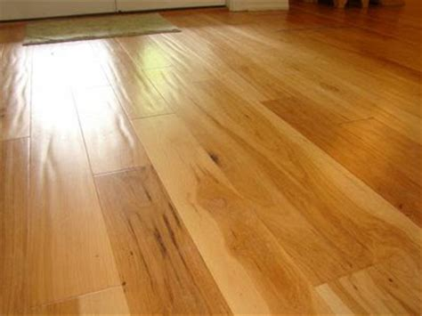 dogs nails scratching hardwood floors dogs and hardwood floors kitchen design notes