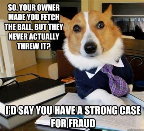 Lawyer Dog Memes - the hilarious lawyer dog meme 20 pics izismile com