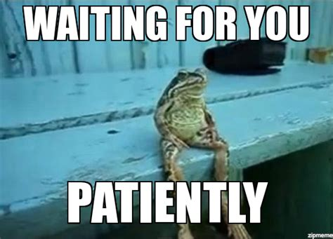 Sitting Frog Meme - site unavailable