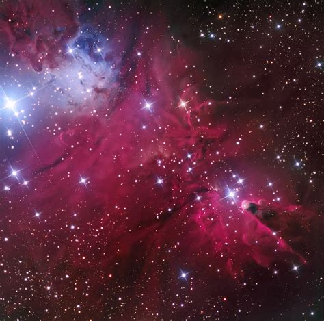 cone nebula and christmas tree cluster www