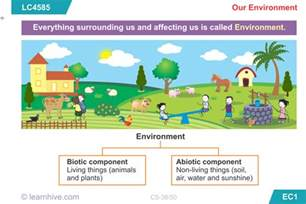 Essay On Our Environment For Class 6 by Learnhive Icse Grade 5 Science Our Environment Lessons Exercises And Practice Tests
