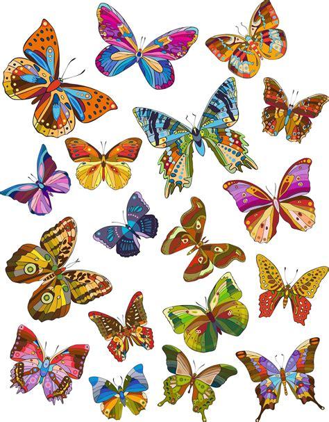 imagenes mariposas gratis 18 ilustraciones de mariposas de colores dibujos