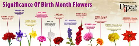 birth month flowers tattoos birth flowers search i want this birth