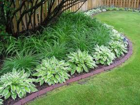 daylilies hostas love the simplicity how lush it looks gardening pinterest gardens