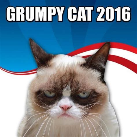grumpy cat for president 2016 palin for vice president 5 names on s