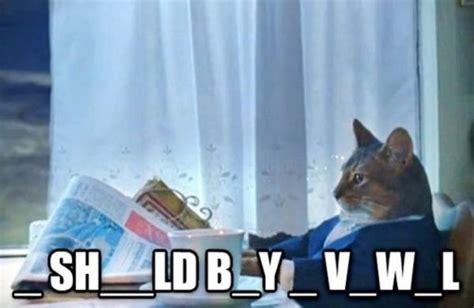 i think i should buy a boat meme image 687068 i should buy a boat cat know your meme