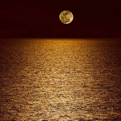 light up my room 8tracks radio at when the light up my room i sit by myself talking to the moon