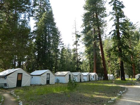 Cabin Cing In California by Yosemite Tent Cing Prices