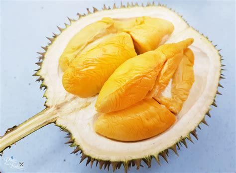 musang king durian prices  increase