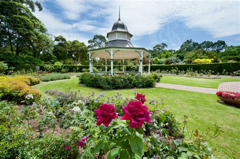 Botanical Gardens Nsw Wollongong Owen Wilson Photography