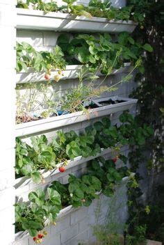 diy gutter gardens images gutter garden diy