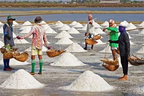 Garam Australia petani garam terdesak garam impor australia