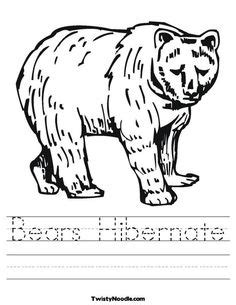 Winter hibernation on pinterest bears bear crafts and animals