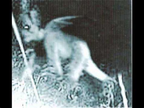 imagenes reales que dan miedo fantasmas reales que dan miedo youtube