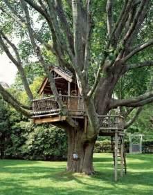 Backyard Treehouse Ideas 20 Tree House Design Ideas To Fill Backyards With