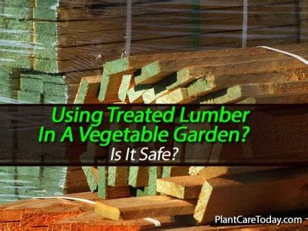 Should Pressure Treated Lumber Be Used In A Vegetable Garden Treated Wood Vegetable Garden