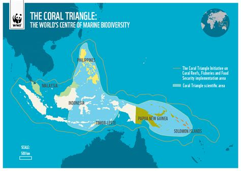 coral triangle facts wwf