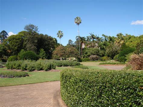 Hotels Near Botanical Gardens Brisbane Brisbane Botanic Gardens Mt Coot Tha Australia Top Tips Before You Go With Photos