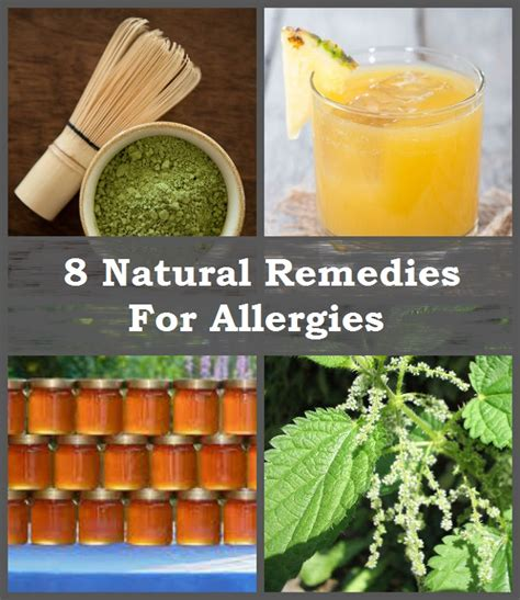 remedies for allergies 8 most effective remedies for allergies