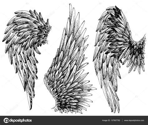 wings drawings set stock vector 169 danussa 137907762