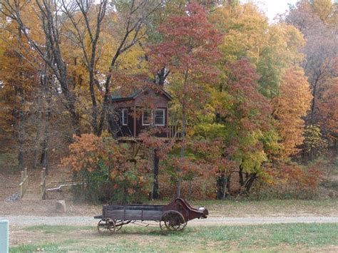 Tree Cabin Holidays by Tree Houses Log Cabins In The Shawnee Of Southern