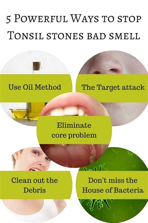 how to make your stop smelling how to stop your house smelling of 28 images 7 ways to make your home smell fresh