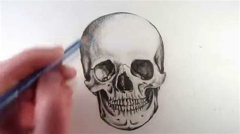 how to draw a realistic skull narrated step by step youtube