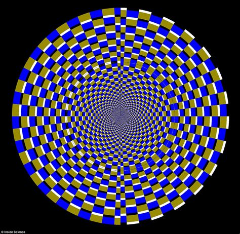 D Not optical illusions reveals how easy it is to fool our